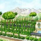 0-Perp jardín desde el frente color