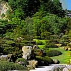 1-jardín japonés inspiración de este proyecto