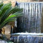 Primer Premio del Club de Jardinería de la Costa del Sol julio 2018
