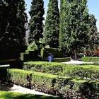 24-grandes columnas de cipreses en los jardines del partal