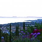 24-huerta-monjas-vistas-marbella
