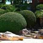 31-jardines-piscina-huerta-monjas