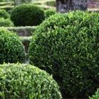 32-jardines-huerta-monjas
