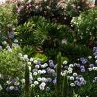 36-jardines-huerta-monjas