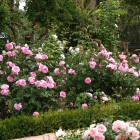 43-gertrull-jekil-jardin-huerta-monjas