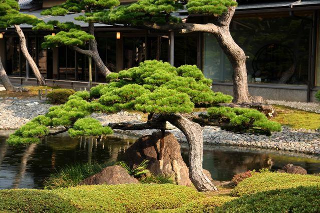 Jardines japoneses de palacios y templos en las pocas Jardin japones informacion