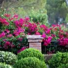 63-jardines-paisajismo-huerta-monjas