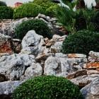 69-jardines-paisajista-huerta-monjas