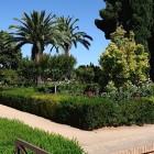 8-jardines altos