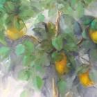 galeria-pepa-valderrama-013