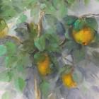 galeria-pepa-valderrama-014