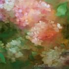 galeria-pepa-valderrama-031