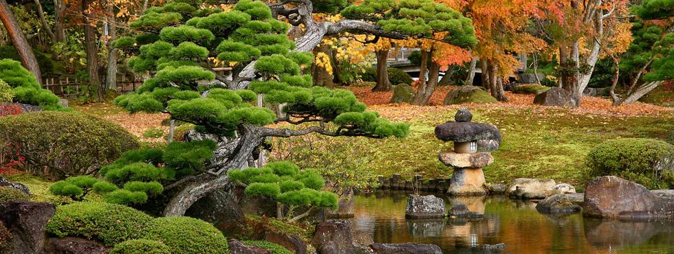 concepto de jardines japoneses - Jardines Japoneses
