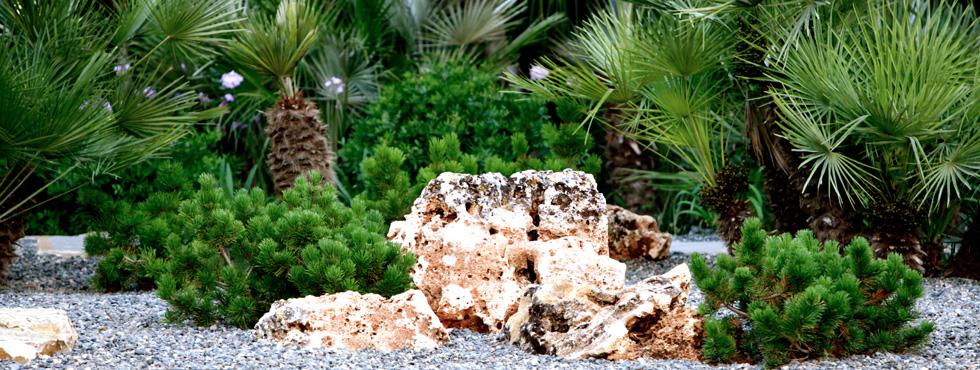 Mantenimiento De Jardines Paisajistas Marbella