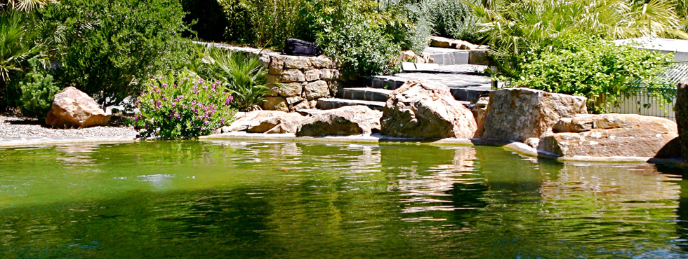 Jardines paisajistas marbella for Paisajismo jardines fotos