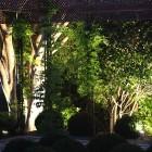 jardin-crucero-marbella-041