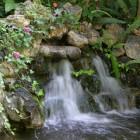 jardin_japones_mgarcia_49