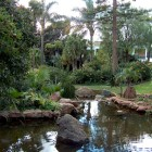 jardin_japones_mgarcia_53