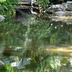 jardin_japones_mgarcia_58